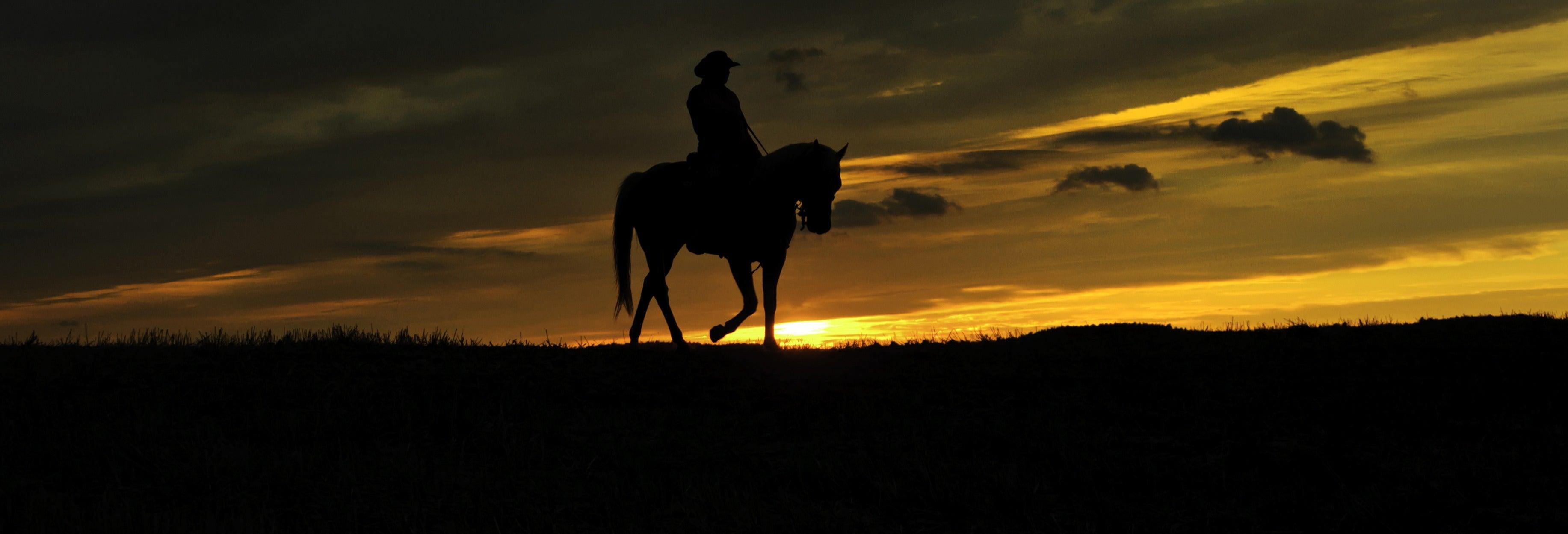 Paseo nocturno a caballo por el valle del Elqui