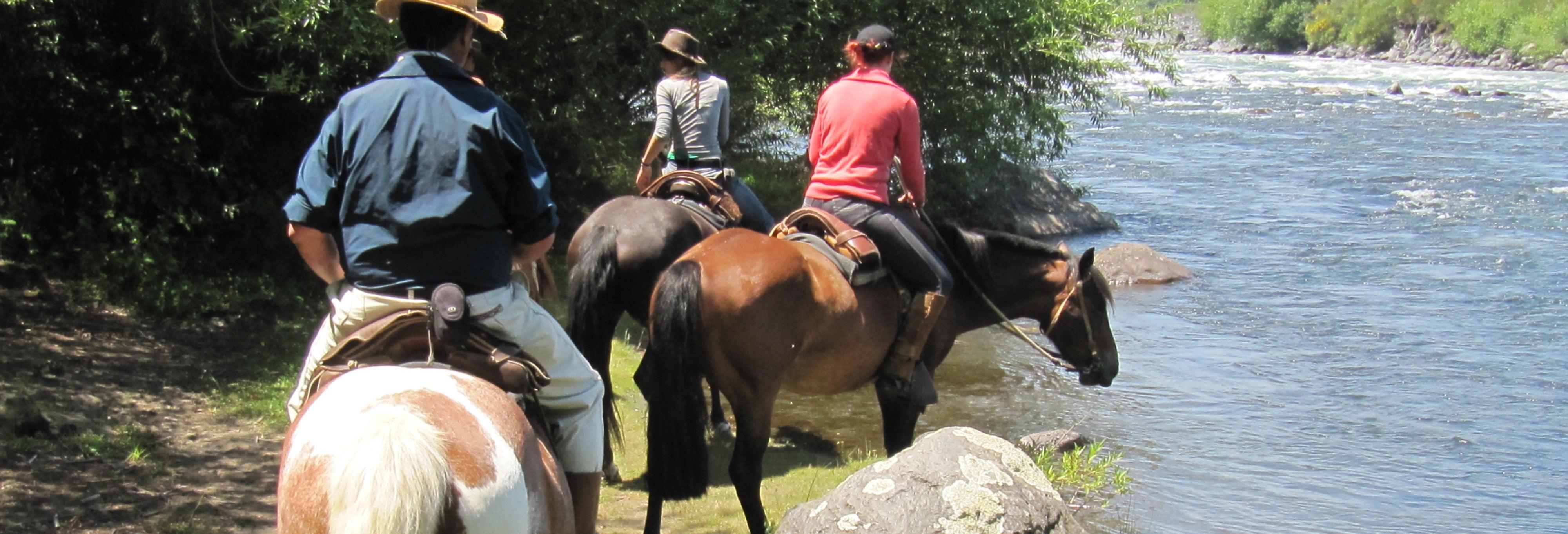 Paseo a caballo por la Reserva Nacional de Villarrica