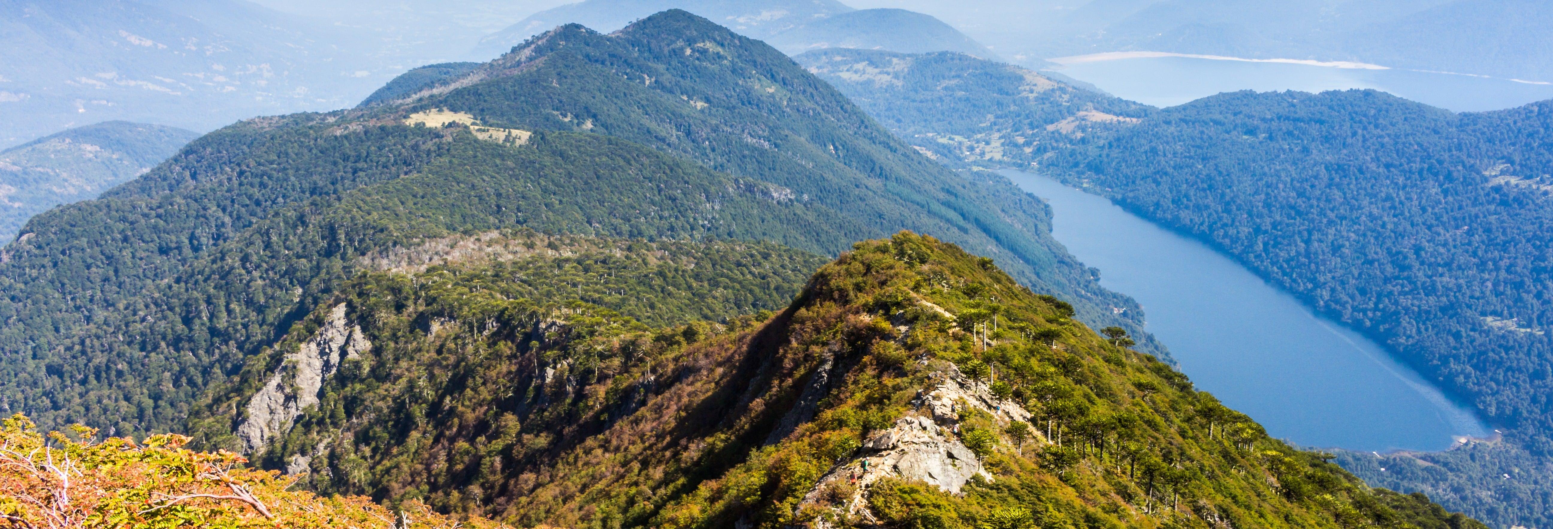 Trilha pelo Parque Nacional Huerquehue