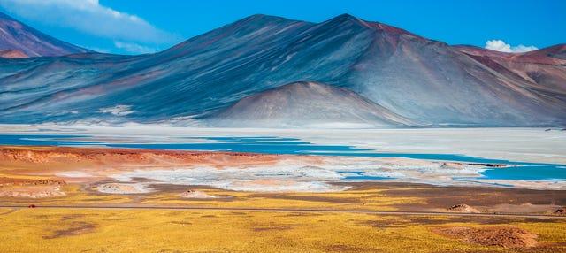 Piedras Rojas, Salar de Atacama e lagos do altiplano