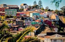 Tour privado por Viña del Mar y Valparaíso
