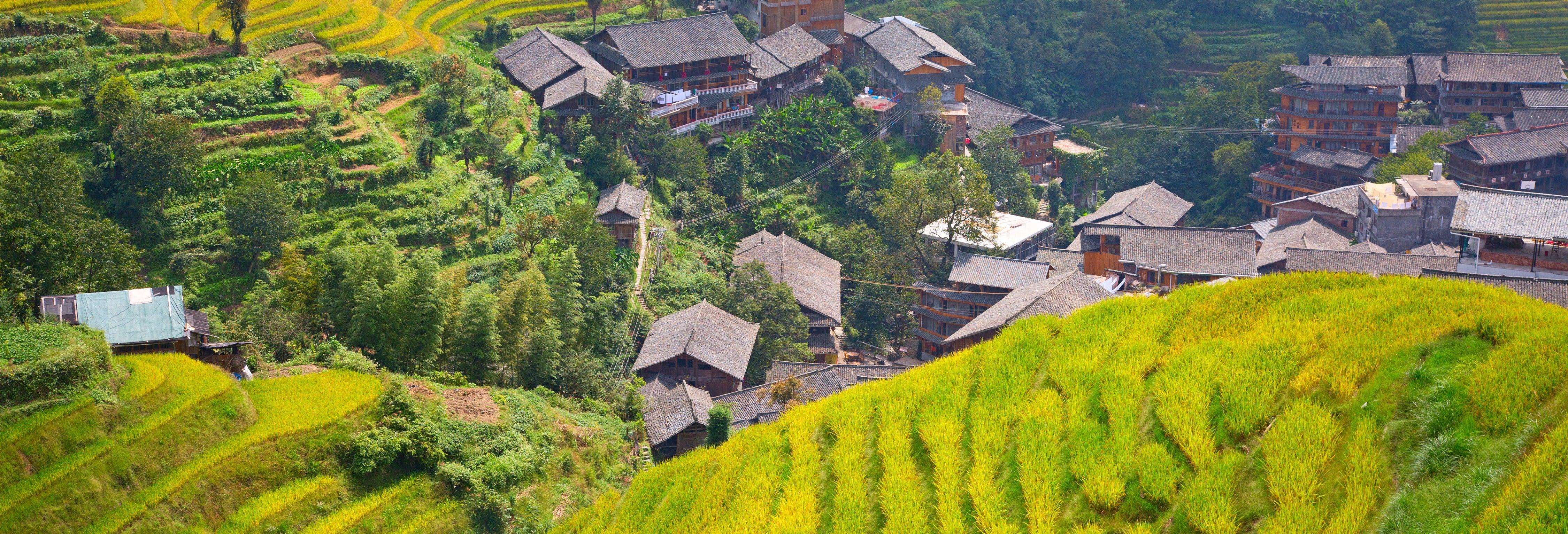 Rice Terraces Private Tour
