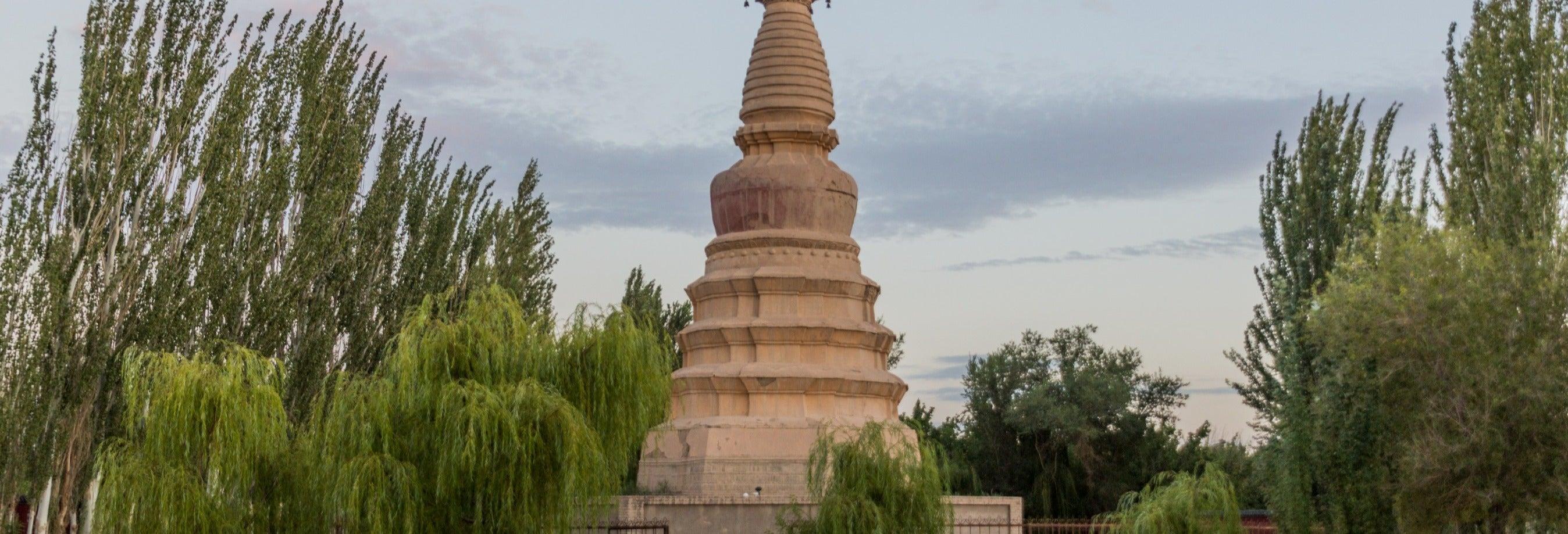 Tour privado por las grutas de Longmen y templo del Caballo Blanco