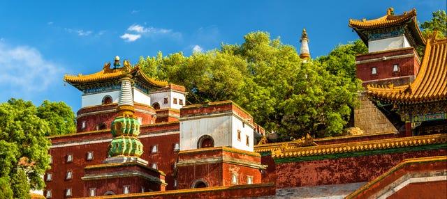 Tour por el Palacio de Verano y el Templo de los Lamas