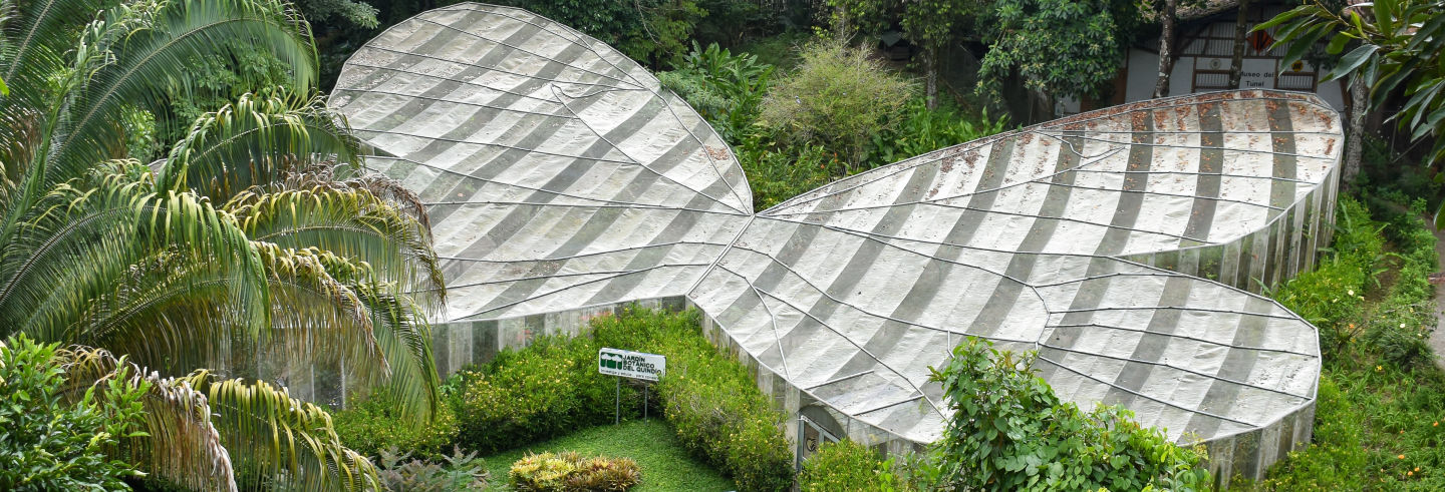 Visita guiada por el Jardín Botánico del Quindío