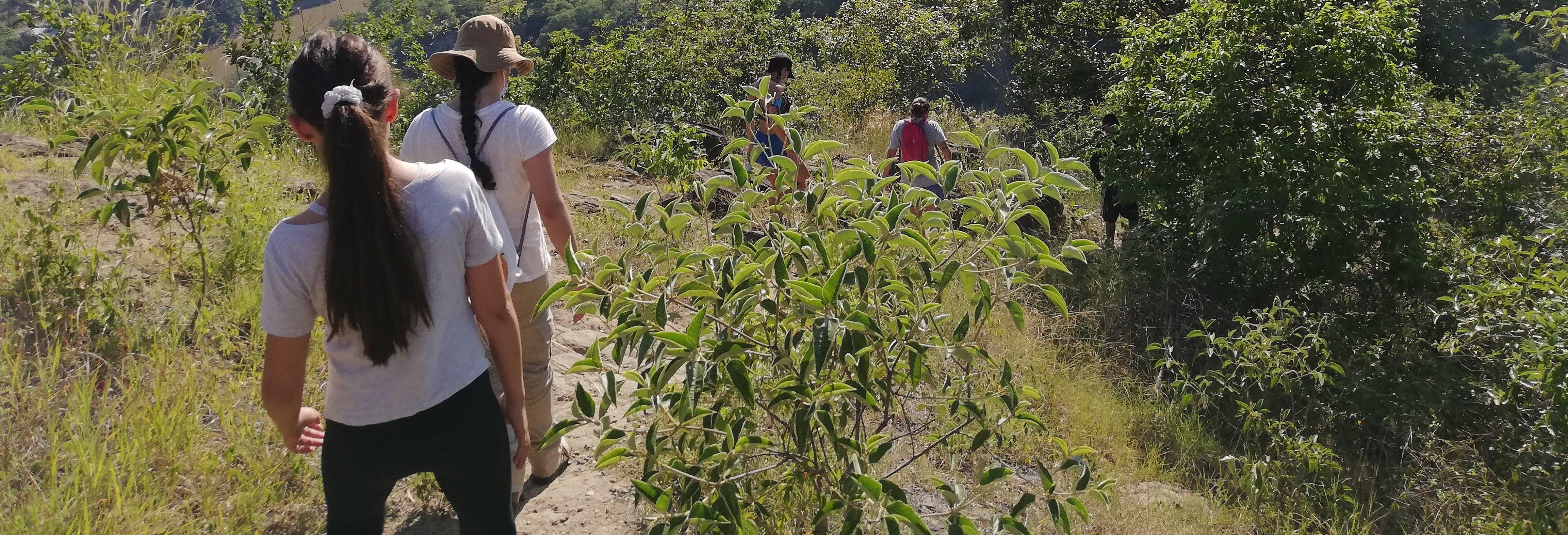Senderismo por el cerro Cacao en Pelota