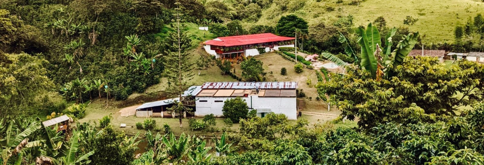 Excursión privada a la finca La Mina