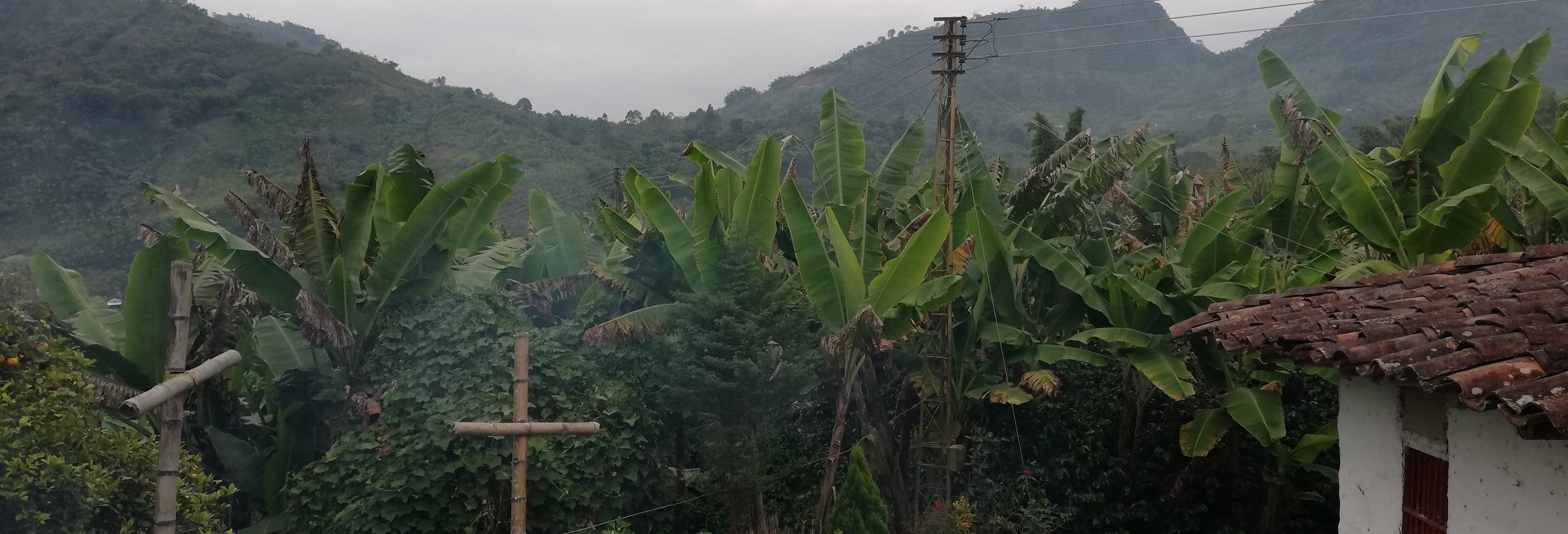 Excursión a Guática y Quinchía