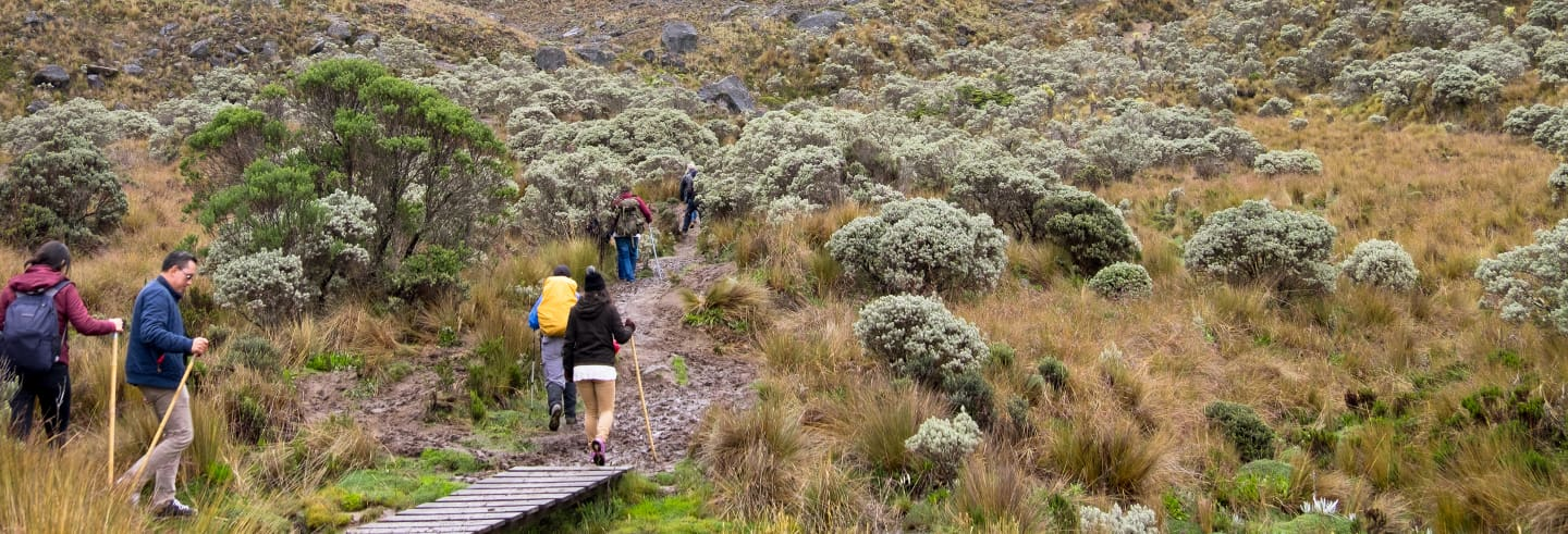 Excursión al Nevado de Santa Isabel