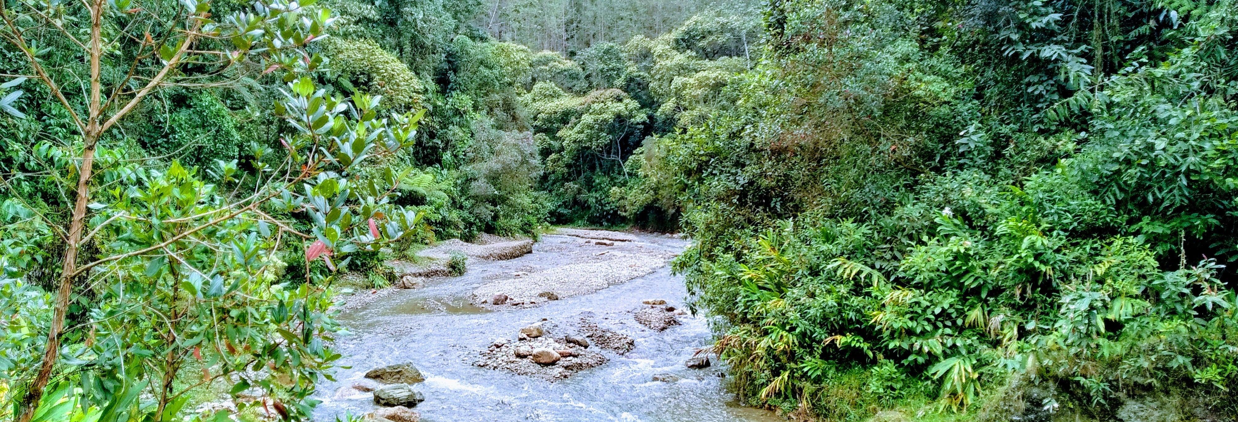 Tour privato di trekking sulle sponde del Melcocho