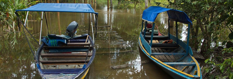 Excursão à ilha Cacao e visita à comunidade de San Antonio