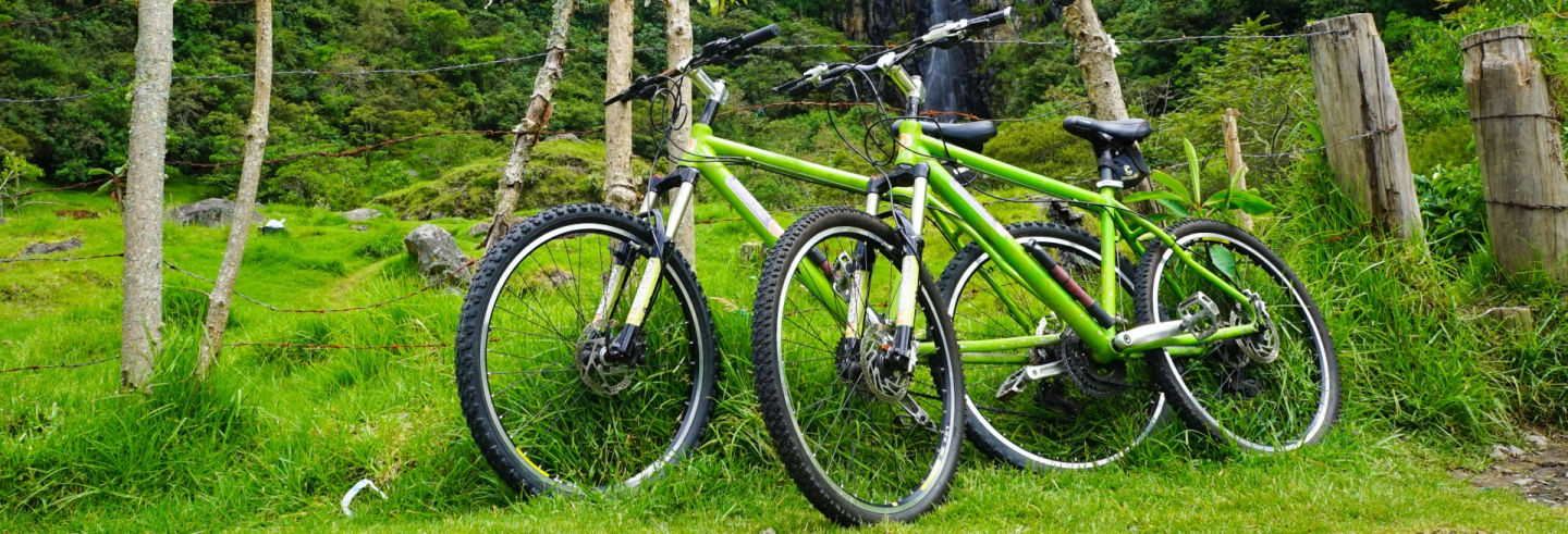 Tour en bicicleta por las montañas de Salento
