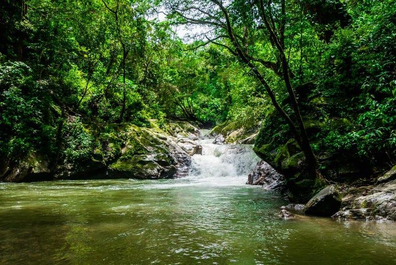 Excursion A Minca Desde Santa Marta Reserva En Civitatis Com