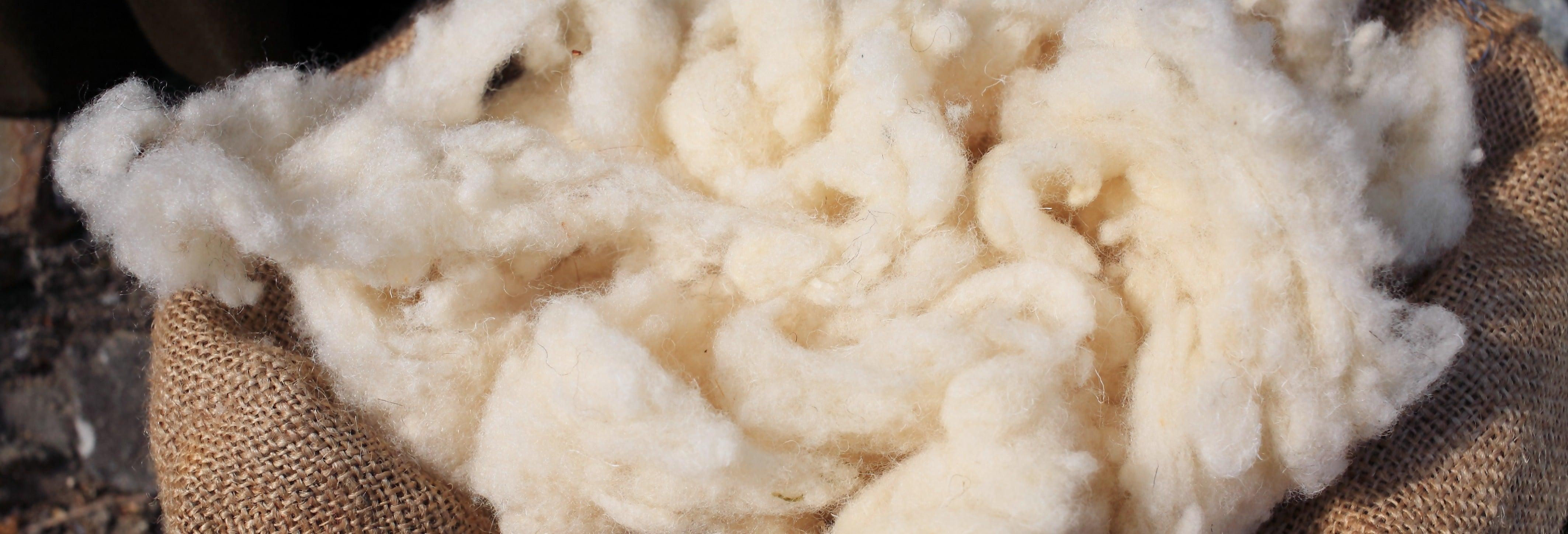 Atelier de laine + Valle Escondido