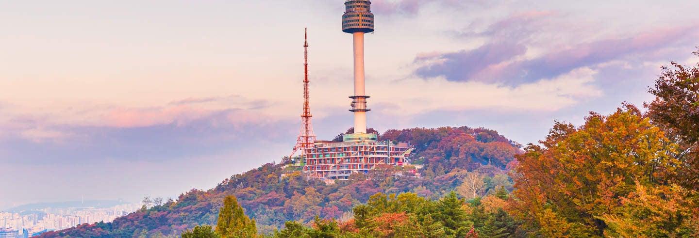 Billet pour la N Seoul Tower