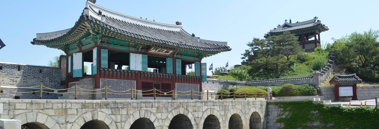 Escursione alla Fortezza di Hwaseong