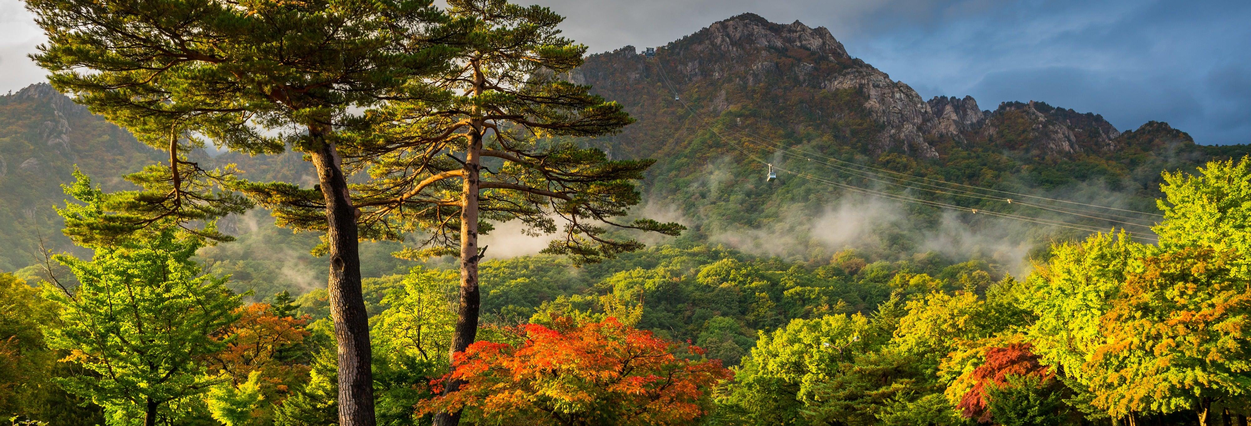 Excursion à Seoraksan et au Temple Naksansa