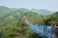Excursión a Wonju