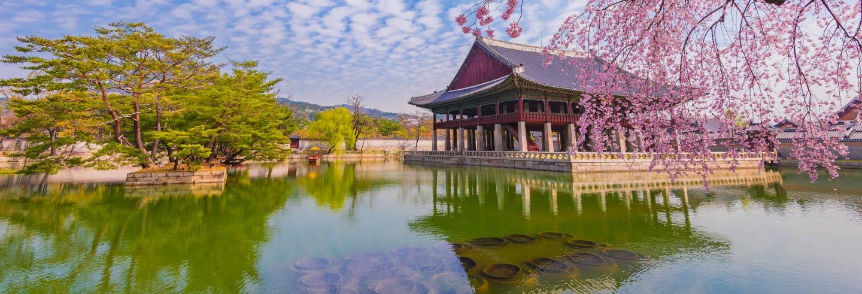 Visita guidata del Palazzo Gyeongbokgung