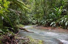 Excursión al Parque Nacional Corcovado