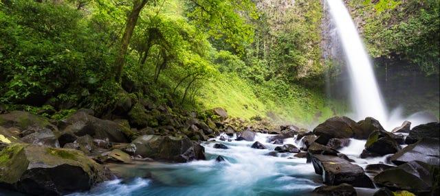 Excursión a la Catarata Río Fortuna