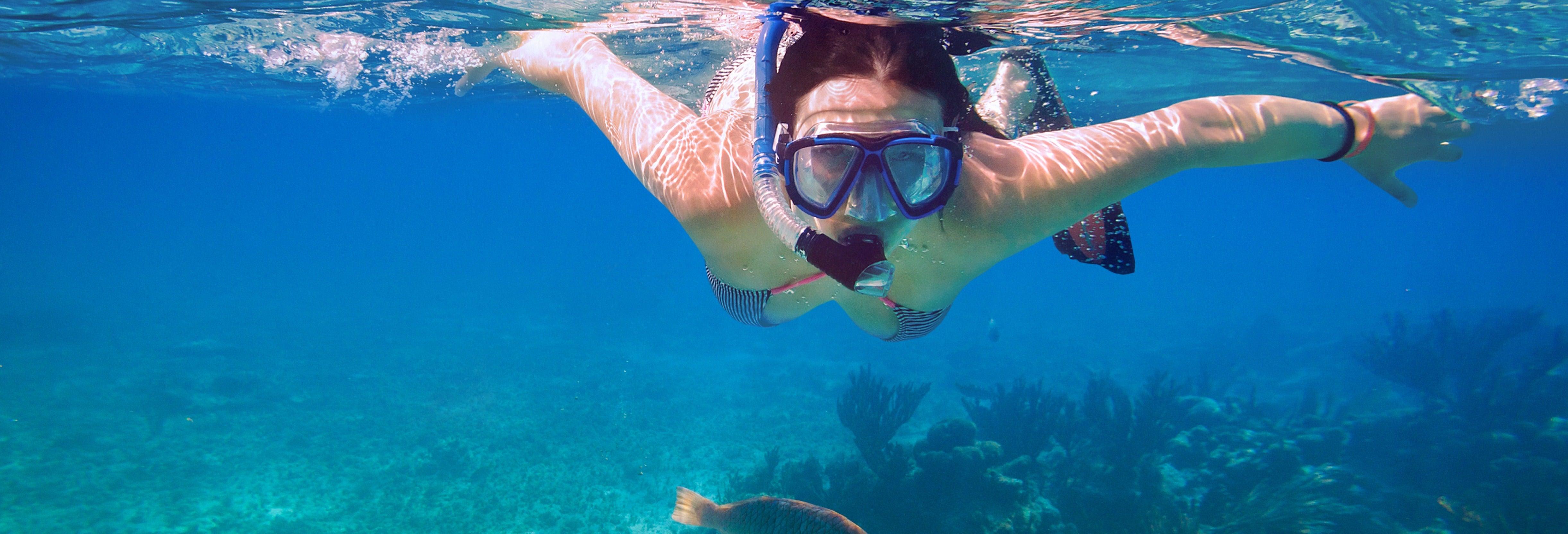 Kayaking & Snorkelling