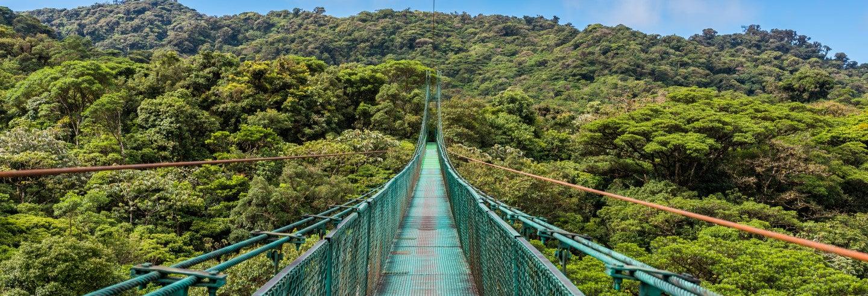 Escursione alla Foresta Nebulosa di Monteverde