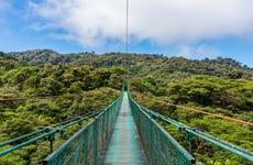 Excursión a los puentes colgantes de Monteverde + Serpentario