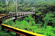 Excursión a los puentes colgantes de Arenal + Aguas termales