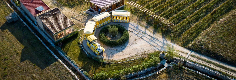 Excursion en train dans la vallée de Konavle + Dégustation de vin