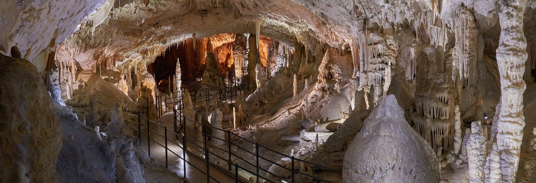Escursione alle Grotte di Postumia e al Castel Lueghi