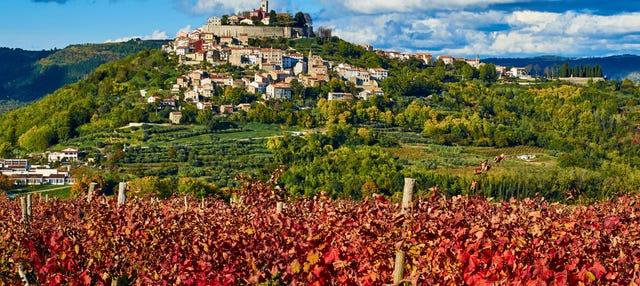 Tour gastronómico por Istria