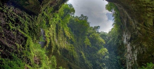 Escursione alla Riserva Naturale El Yunque