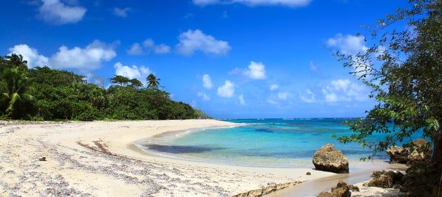Transfer alla Spiaggia di Maguana