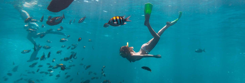 Snorkel en La Habana