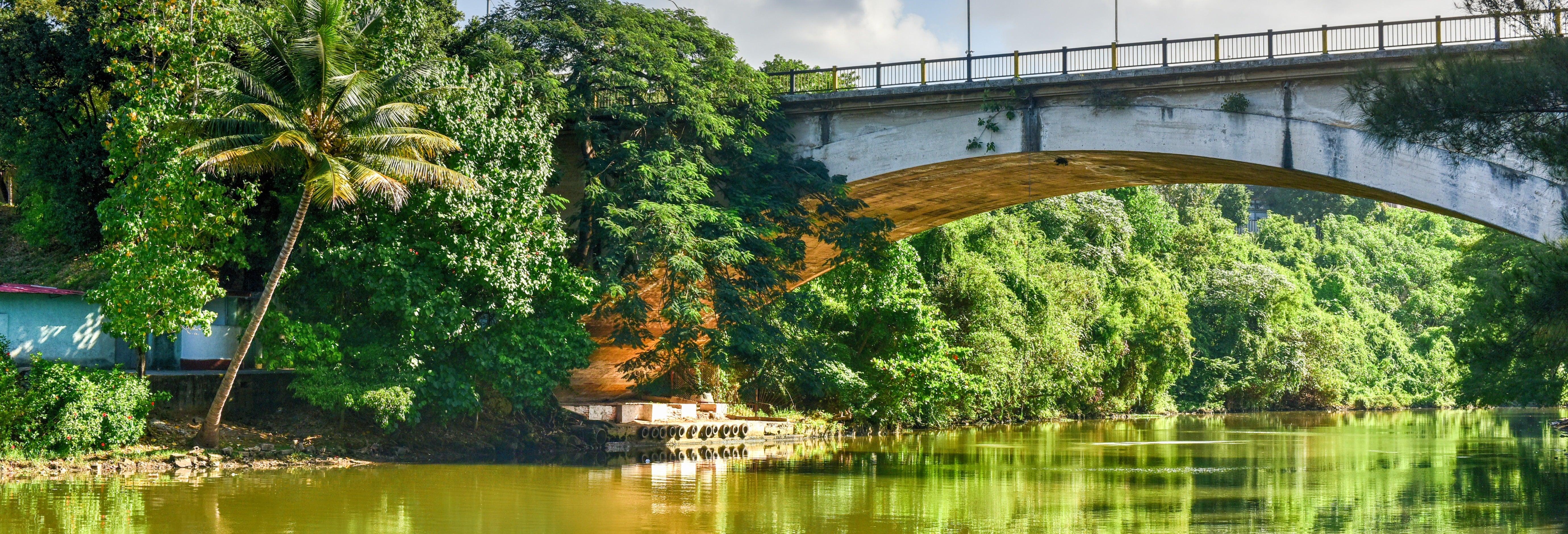 Visita guiada por el Parque Almendares