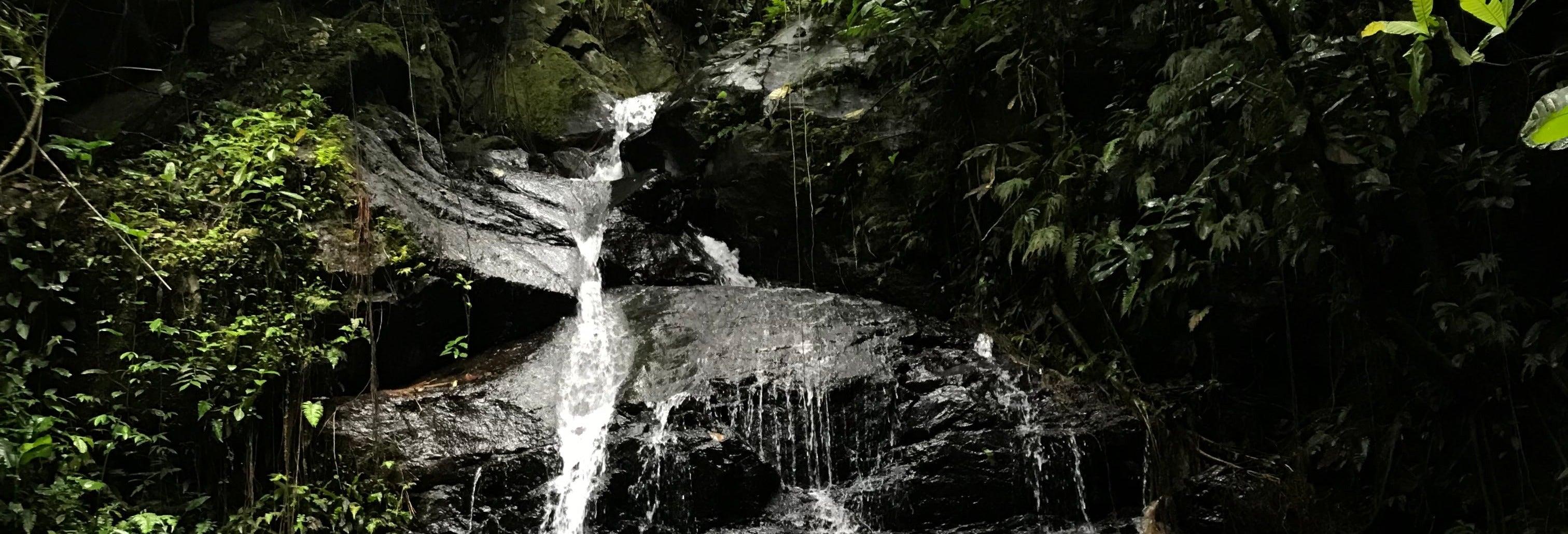 Excursão às Sete Cascatas de Naranjal