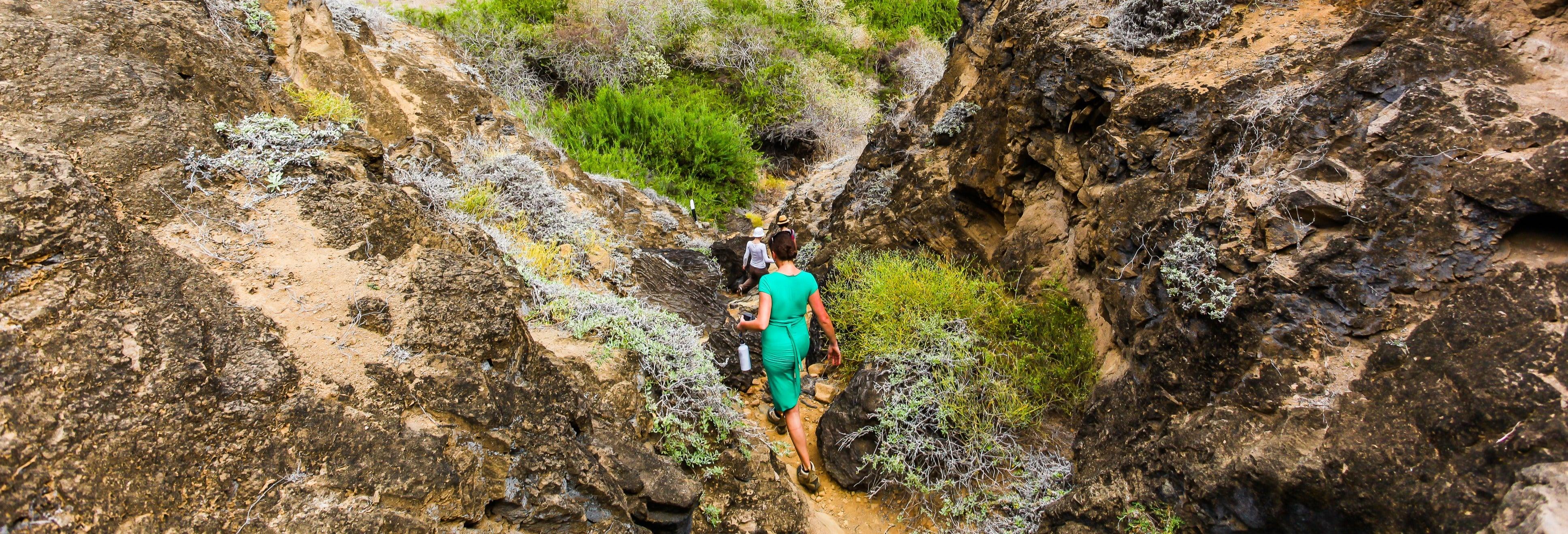 Escursione a Punta Pitt