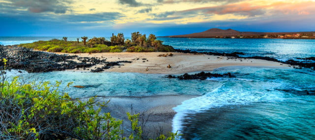 Galapagos Island Hopping 5-Day Tour Package