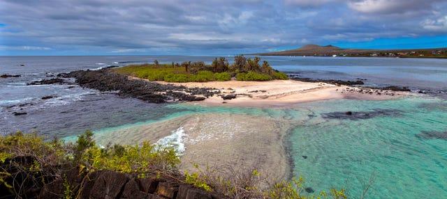 Excursión a Isla Floreana