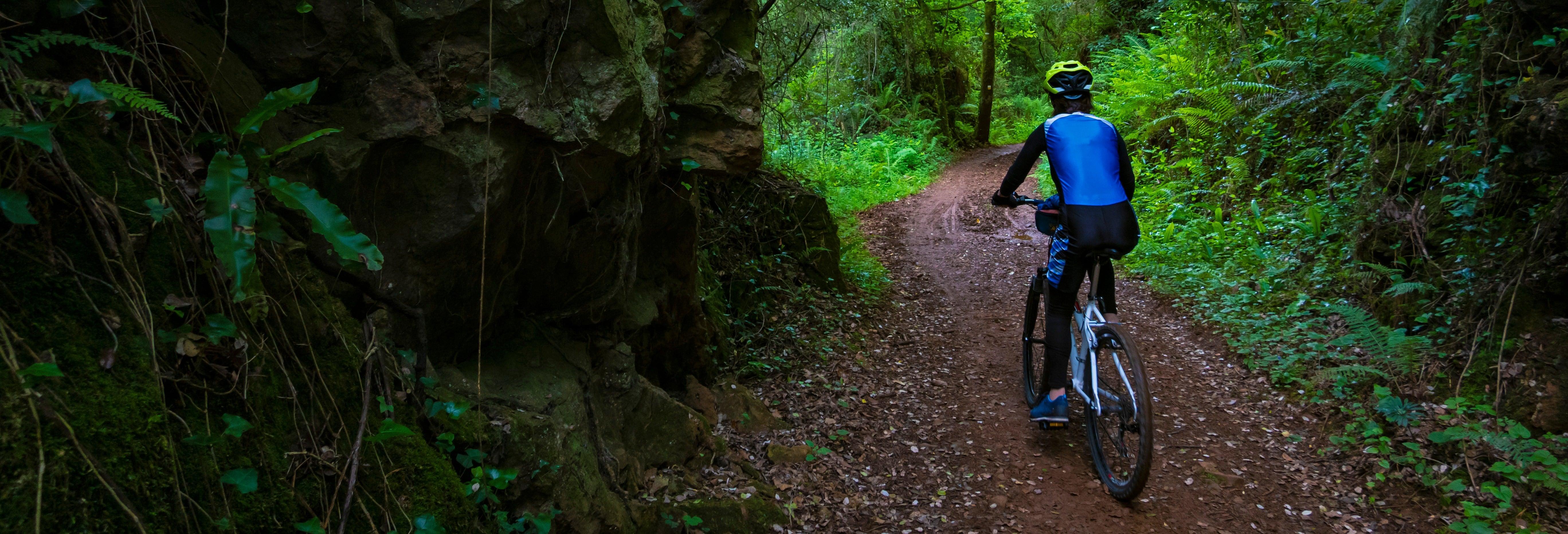 Tour en bicicleta por la Isla Santa Cruz