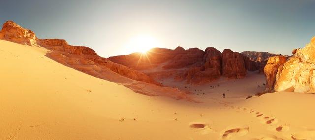 Desierto del Sinaí con cena y espectáculo