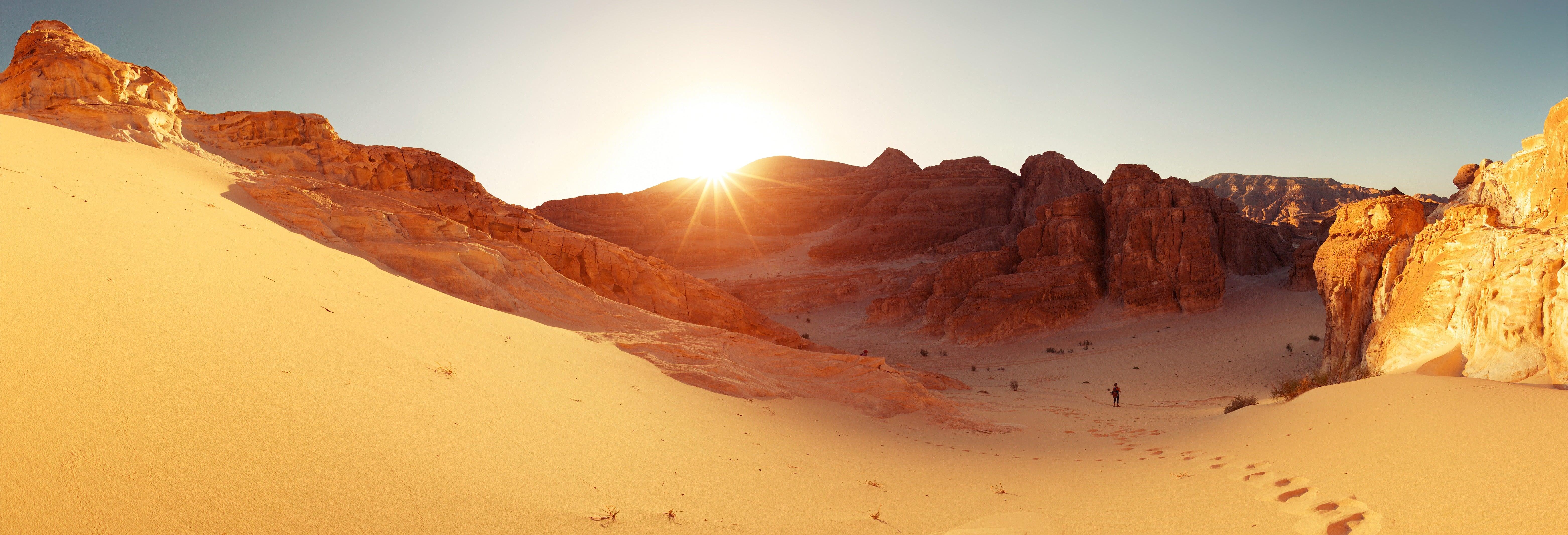 Deserto del Sinai con cena e spettacolo