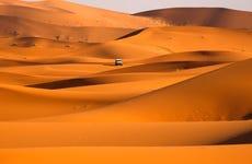 Desert Safari con cena y espectáculo