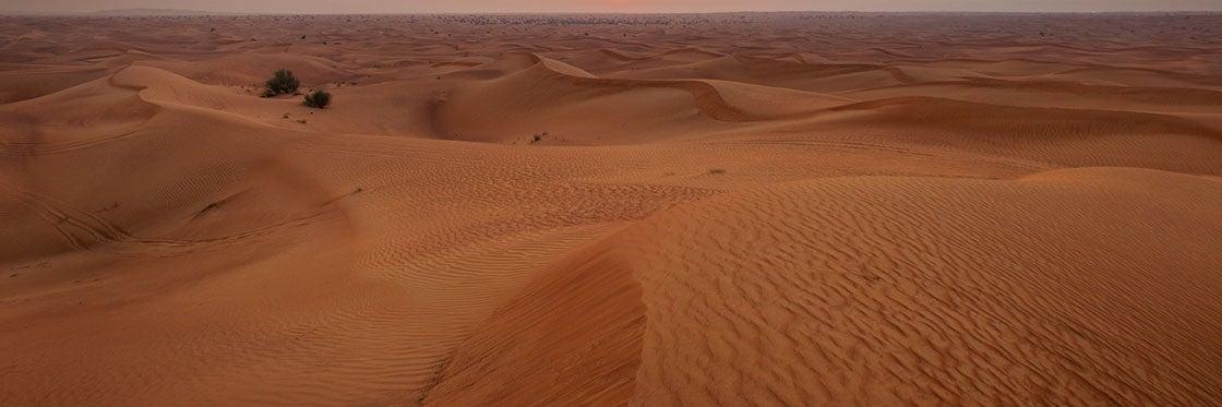 Histoire de Dubaï