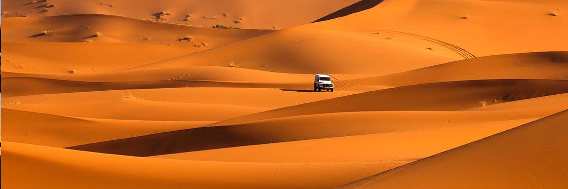 Safári pelo deserto