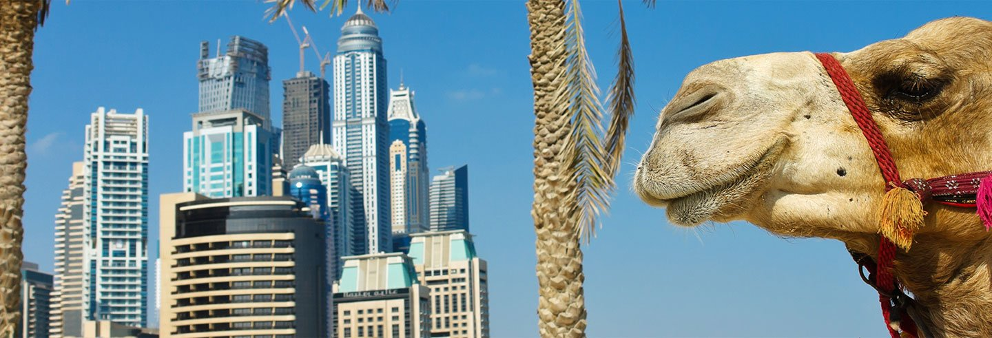Offer: Tour of Dubai + Desert Safari