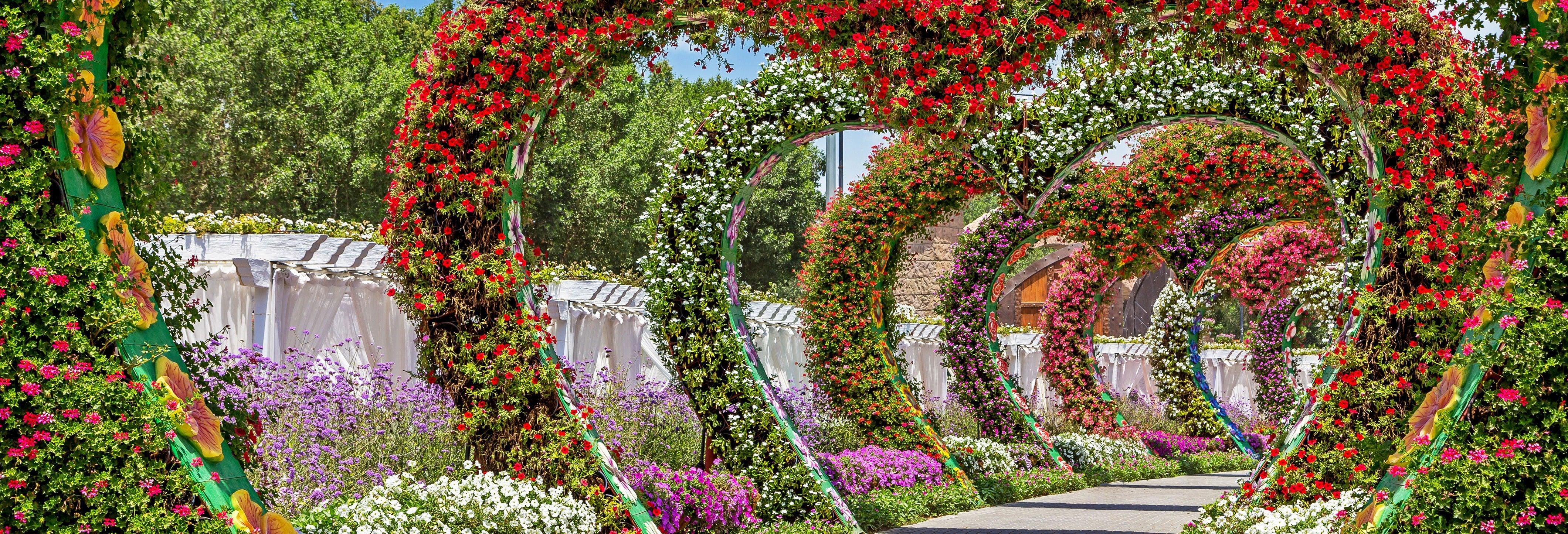 Tour por el Mariposario de Dubái y el Jardín del Milagro