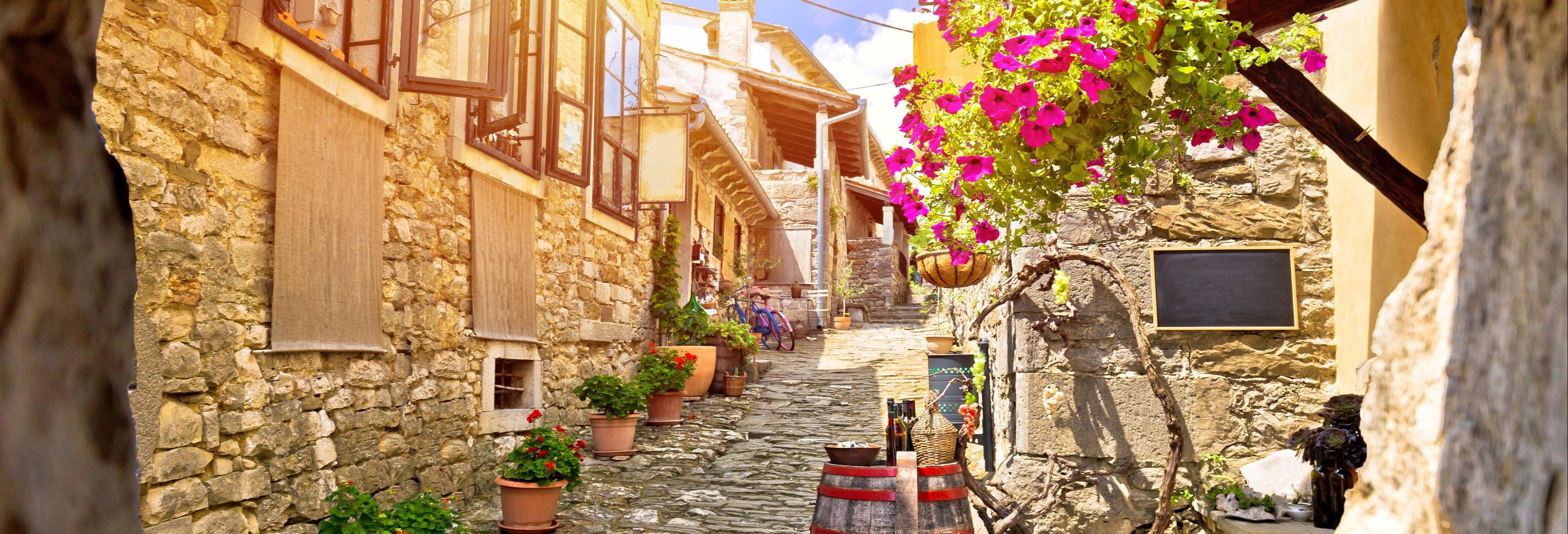 Istria Food Tour