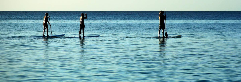 Tour de paddle surf por Alboraya